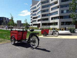Cargo bikes in Jätkäsaari